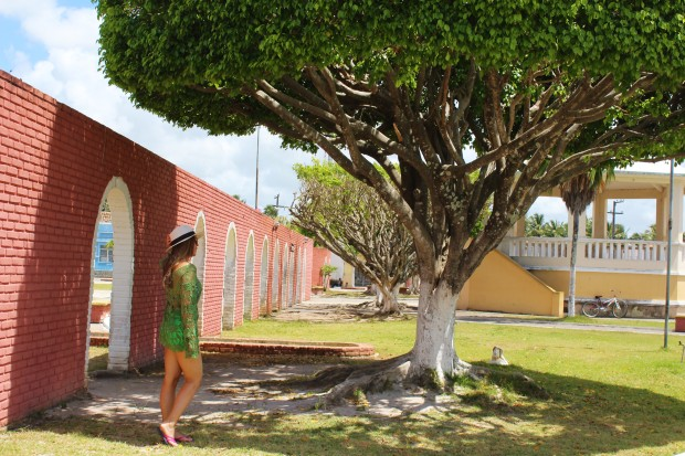 Piaçabuçu Alagoas